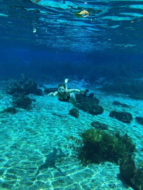 florida springs underwater